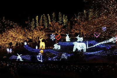 Here's Our Essential Guide to the Best Christmas Lights Tours in Vancouver